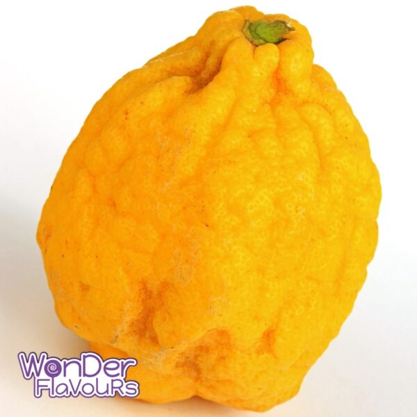 Cedro (Fruit) SC - Wonder Flavours